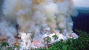 França, Finlândia, Argentina e mais: saiba a opinião internacional sobre as queimadas na Amazônia