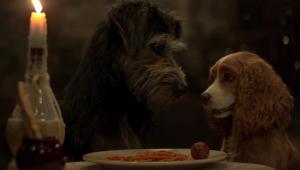 Vem se (re)apaixonar por 'A Dama e o Vagabundo' em 1º trailer do live-action