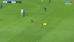 Cachorro invade o gramado em jogo do Brasileirão e deixa gandula no chão; veja