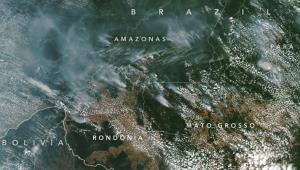 Queimadas na Amazônia estão na média dos últimos 15 anos, diz NASA