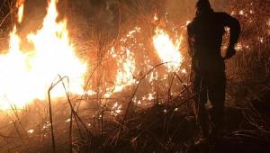 Incêndios atingem 6 mil hectares na Chapada dos Guimarães; veja vídeos