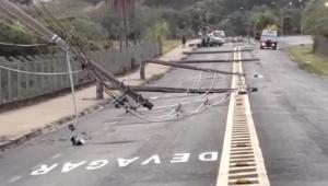 motorista derruba 11 postes ao desviar de cachorro
