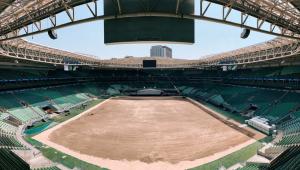 Allianz Parque retira gramado e deve reimplantar no dia 26