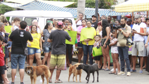 moradores-fazem-protesto-contra-morte-de-agatha-felix-no-alemao