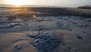 Deputados protocolam pedido para CPI sobre o derramamento de óleo no Nordeste