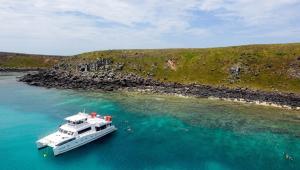 Manchas de óleo se aproximam de arquipélago de corais na Bahia