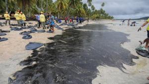 Manchas de óleo chegam à orla de Ipojuca, no litoral de Pernambuco